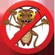 cockroachsmasher