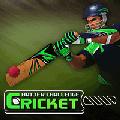 cricketbatter
