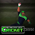 cricketfielder