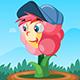 flowerrush